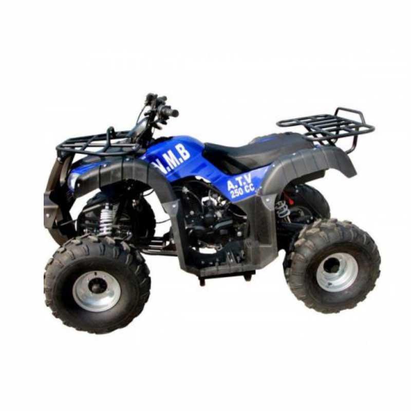 موتور چهار چرخ NMB مدل 250